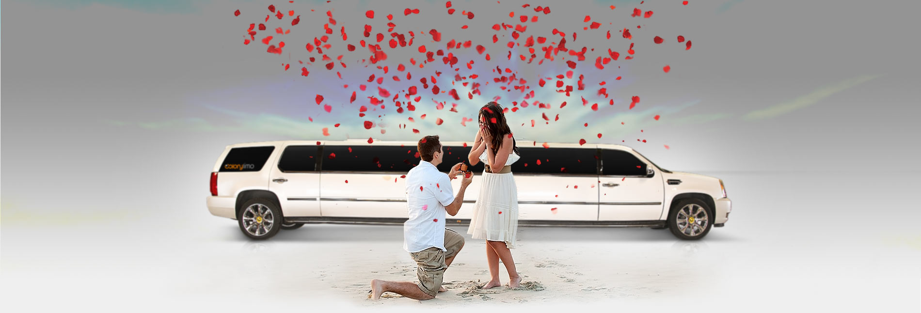 proposal Colony Limo Service Houston